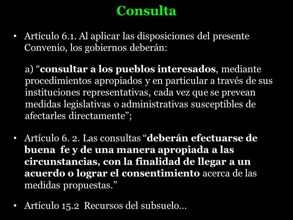 Consulta Artículo 6.1. Al aplicar las disposiciones del presente Convenio, los gobiernos deberán: