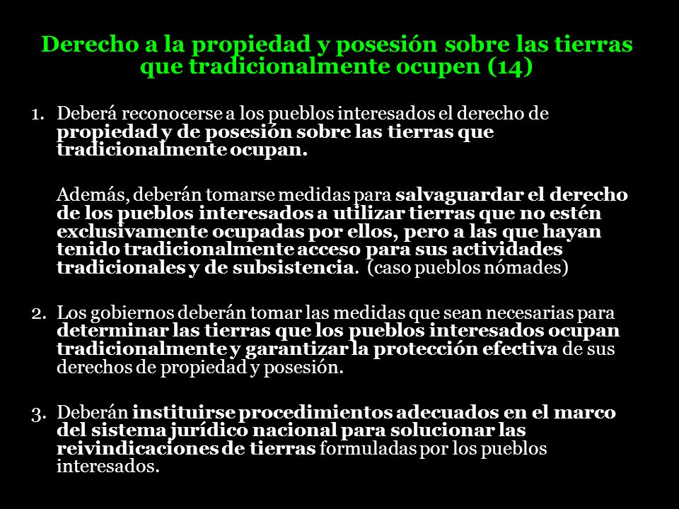 Derecho a la propiedad y posesión sobre las tierras que tradicionalmente ocupen (14)