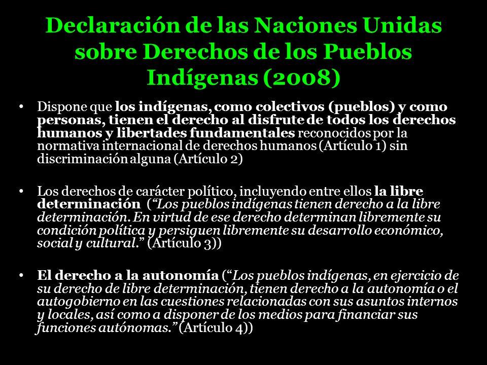 Declaración de las Naciones Unidas sobre Derechos de los Pueblos Indígenas (2008)