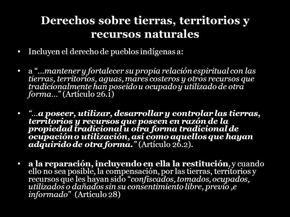 Derechos sobre tierras, territorios y recursos naturales