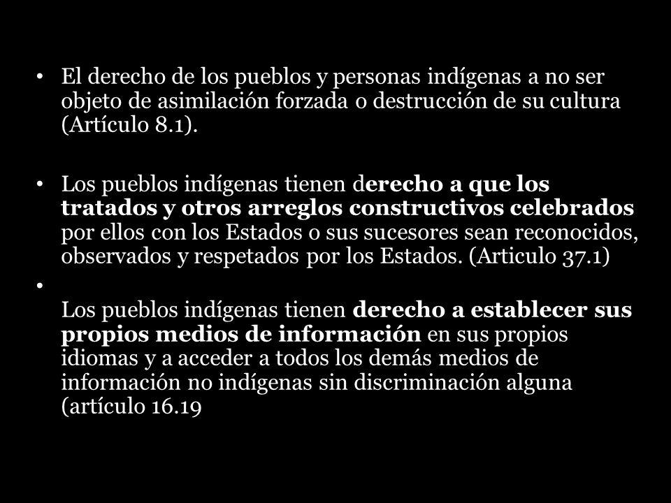 El derecho de los pueblos y personas indígenas a no ser objeto de asimilación forzada o destrucción de su cultura (Artículo 8.1).