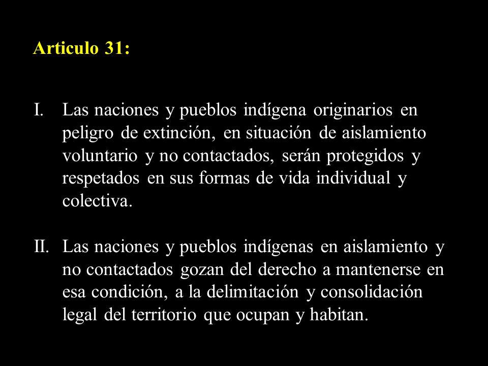 Articulo 31: