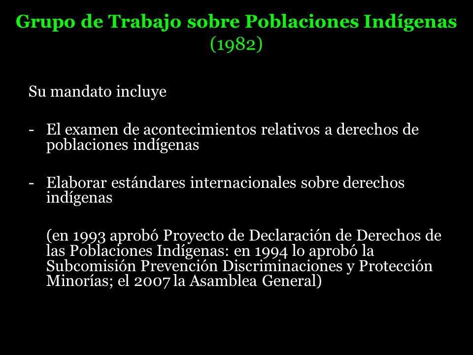 Grupo de Trabajo sobre Poblaciones Indígenas (1982)