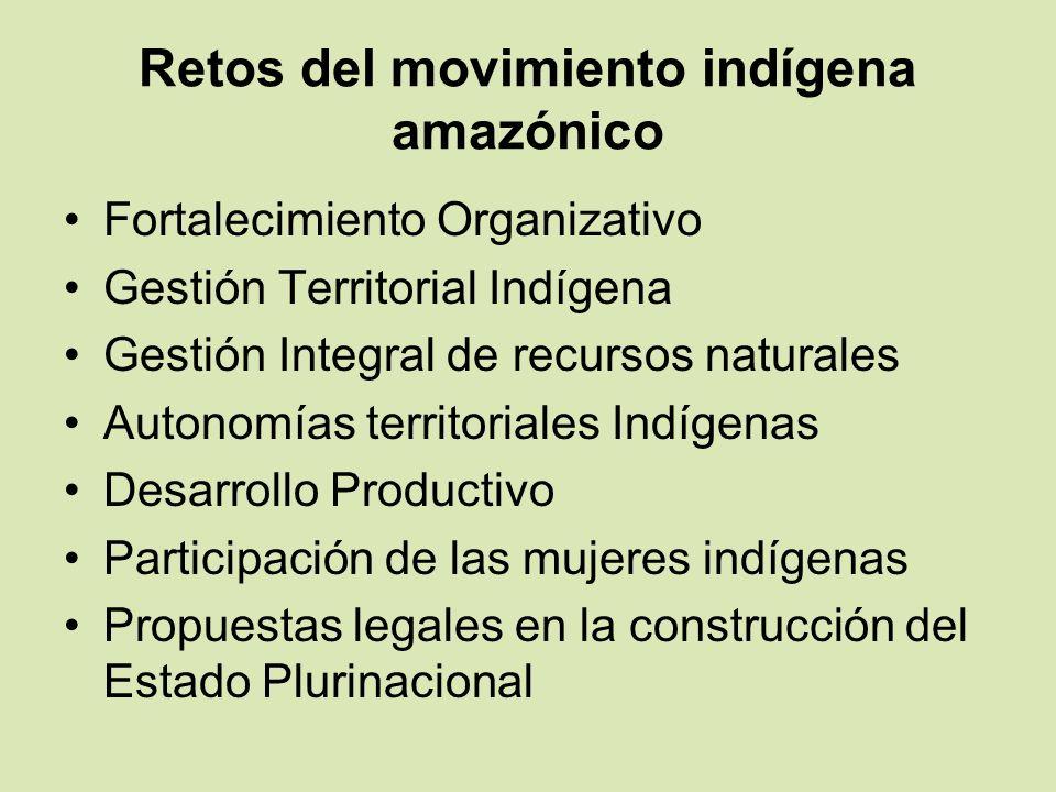 Retos del movimiento indígena amazónico