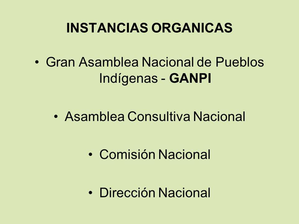Gran Asamblea Nacional de Pueblos Indígenas - GANPI