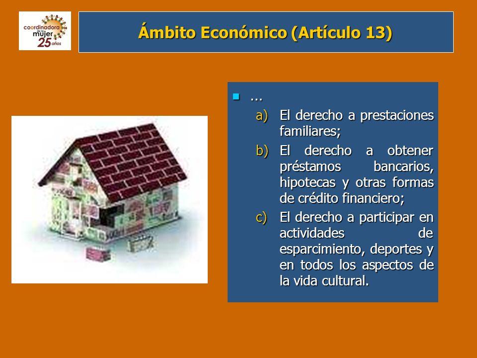 Ámbito Económico (Artículo 13)