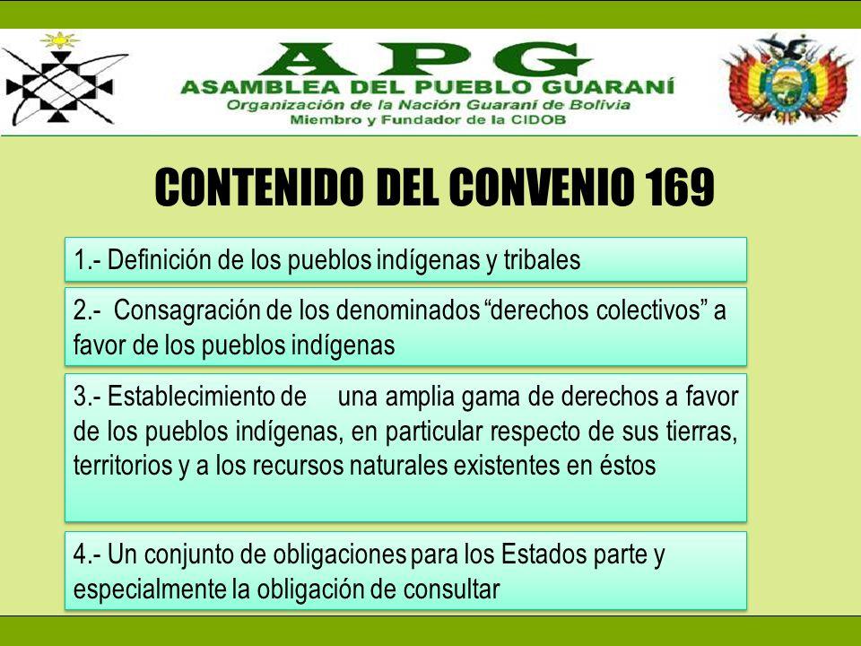 CONTENIDO DEL CONVENIO 169