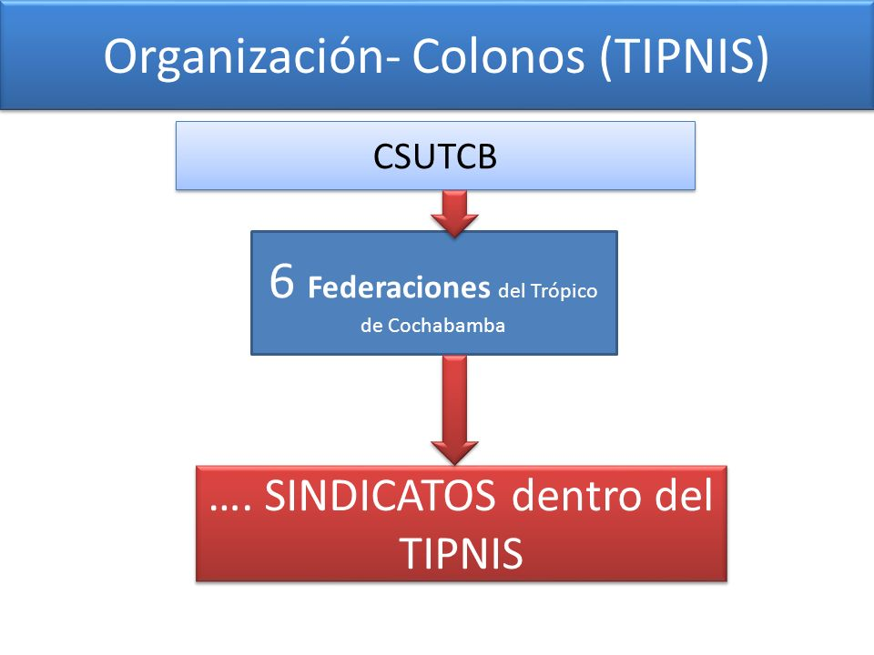Organización- Colonos (TIPNIS)