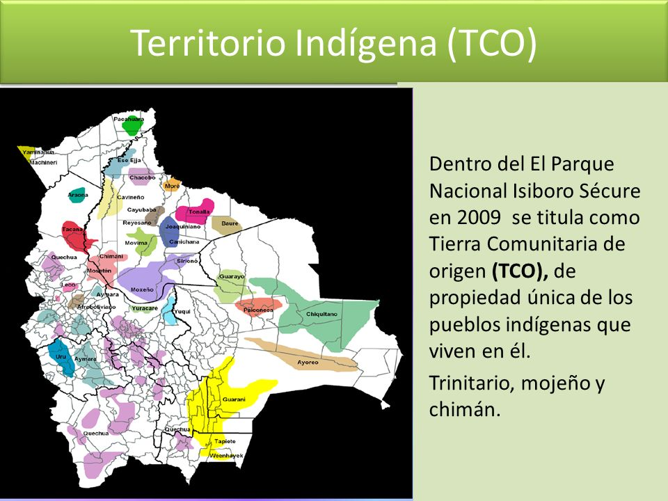 Territorio Indígena (TCO)