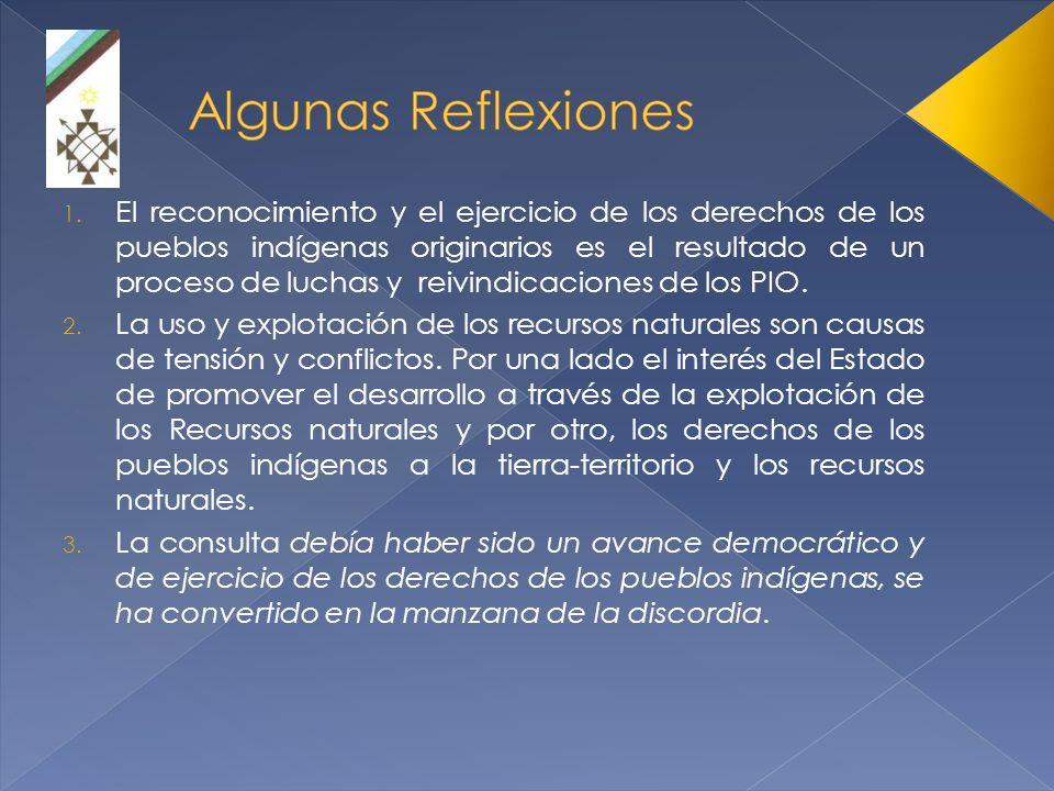 El reconocimiento y el ejercicio de los derechos de los pueblos indígenas originarios es el resultado de un proceso de luchas y reivindicaciones de los PIO.