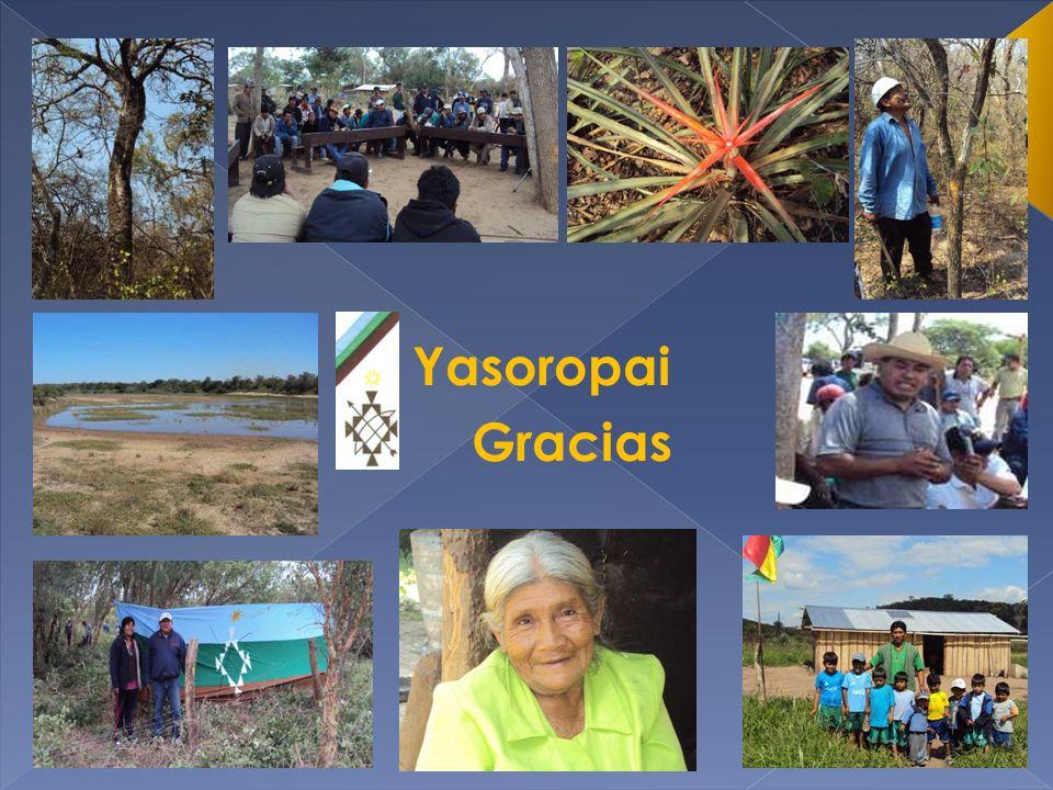 Yasoropai Gracias