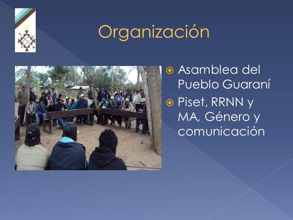 Organización Asamblea del Pueblo Guaraní