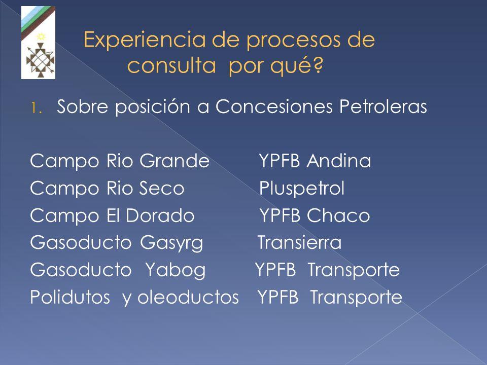 Experiencia de procesos de consulta por qué