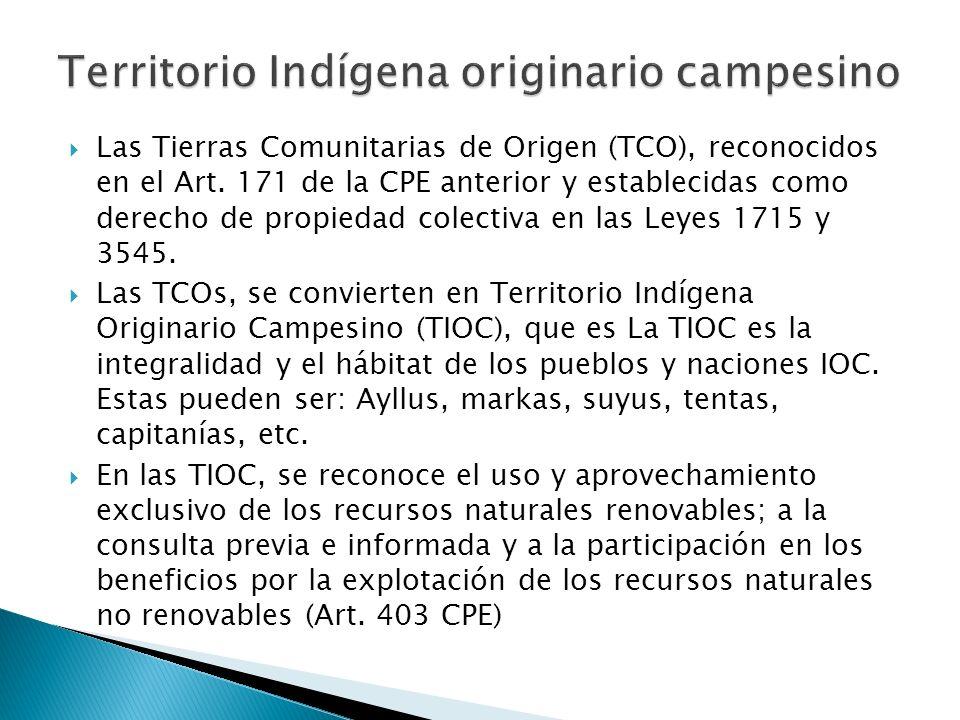Territorio Indígena originario campesino