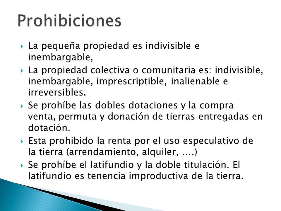 Prohibiciones La pequeña propiedad es indivisible e inembargable,