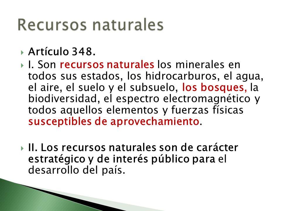 Artículo 348.
