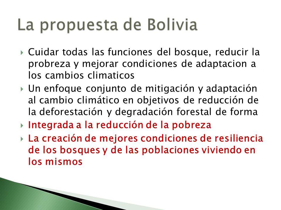 Cuidar todas las funciones del bosque, reducir la probreza y mejorar condiciones de adaptacion a los cambios climaticos