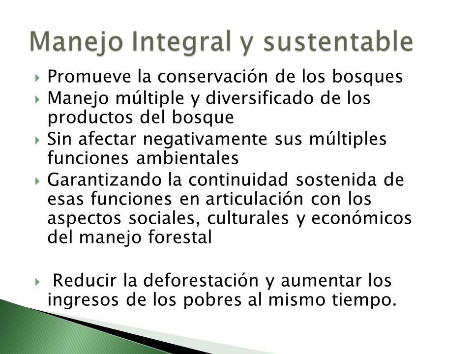 Promueve la conservación de los bosques