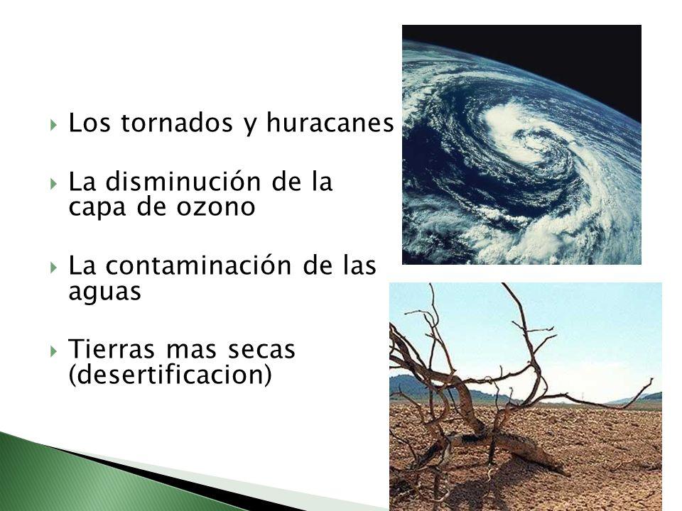 Los tornados y huracanes