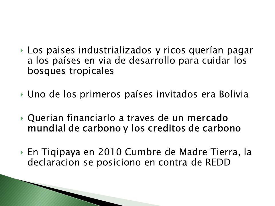 Los paises industrializados y ricos querían pagar a los países en via de desarrollo para cuidar los bosques tropicales