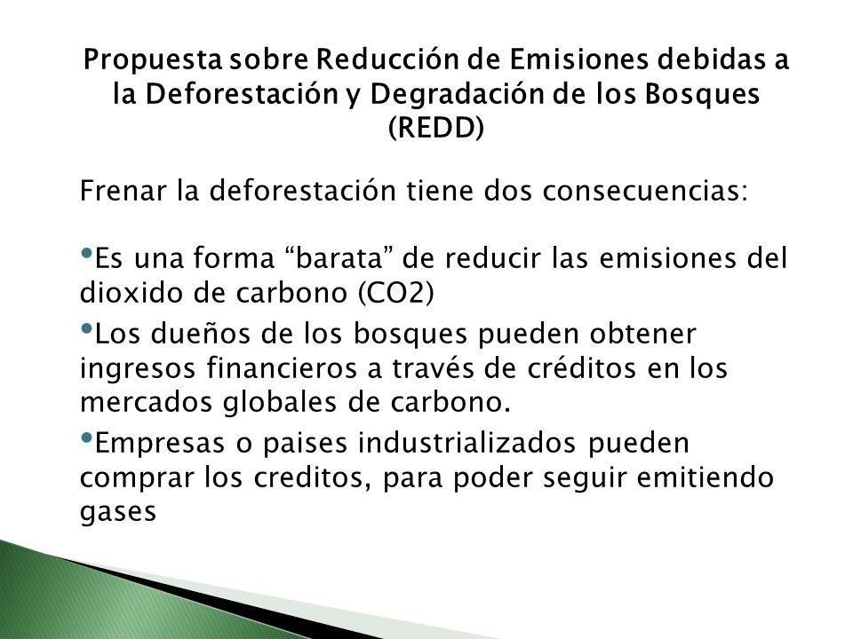 Propuesta sobre Reducción de Emisiones debidas a la Deforestación y Degradación de los Bosques (REDD)