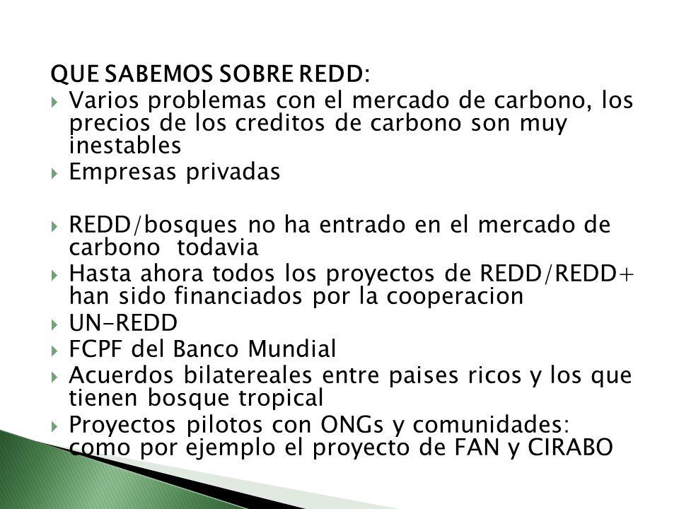 QUE SABEMOS SOBRE REDD: