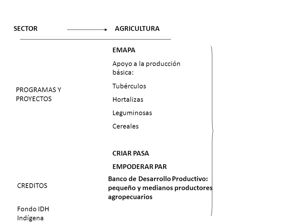 SECTOR AGRICULTURA. EMAPA. Apoyo a la producción básica: Tubérculos. Hortalizas. Leguminosas. Cereales.