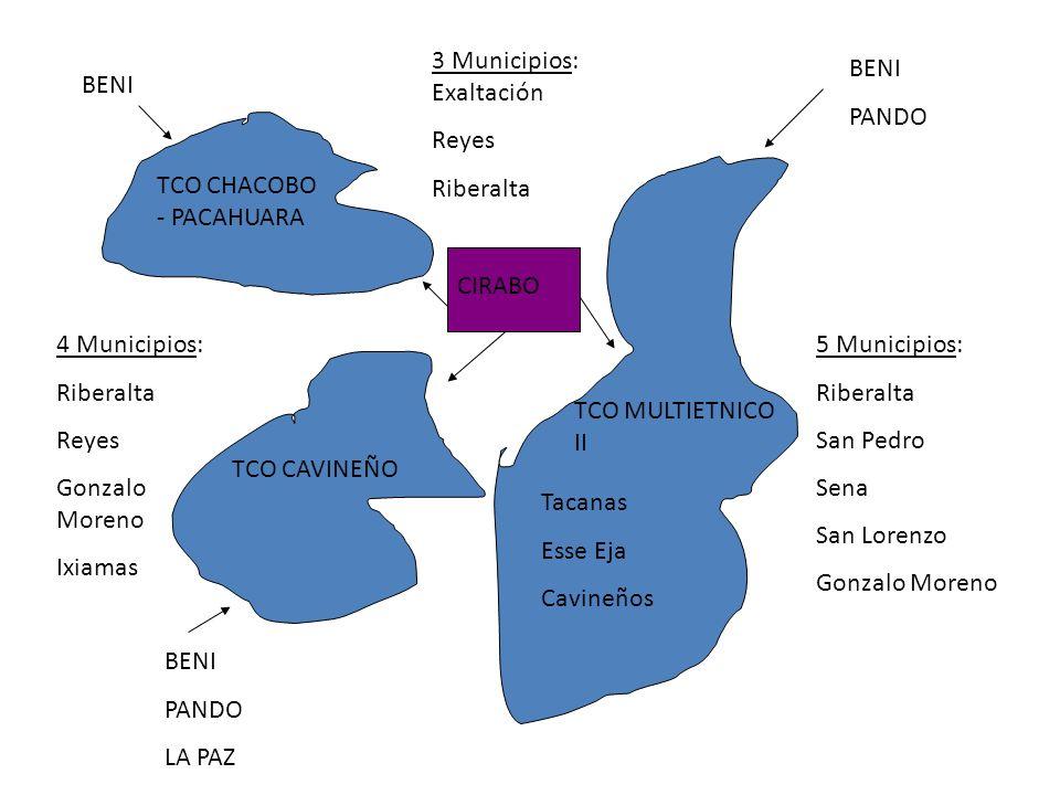 3 Municipios: Exaltación