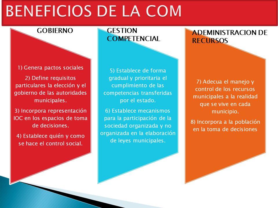 GOBIERNO GESTION COMPETENCIAL ADEMINISTRACION DE RECURSOS
