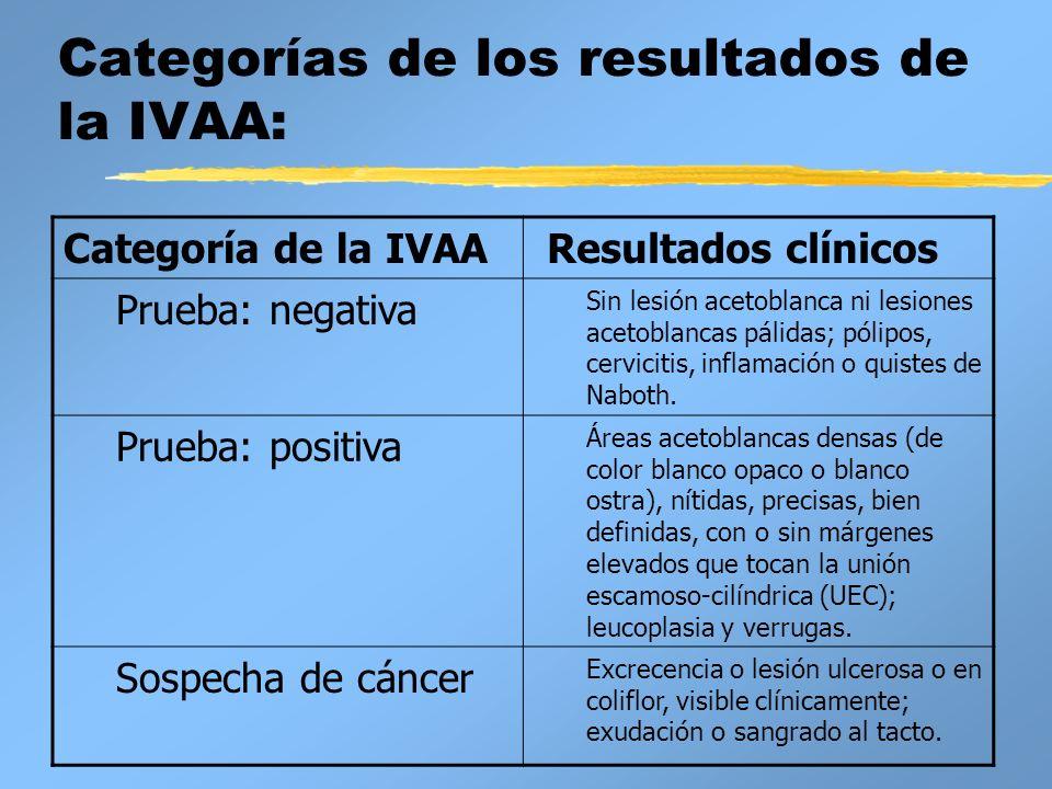 Categorías de los resultados de la IVAA: