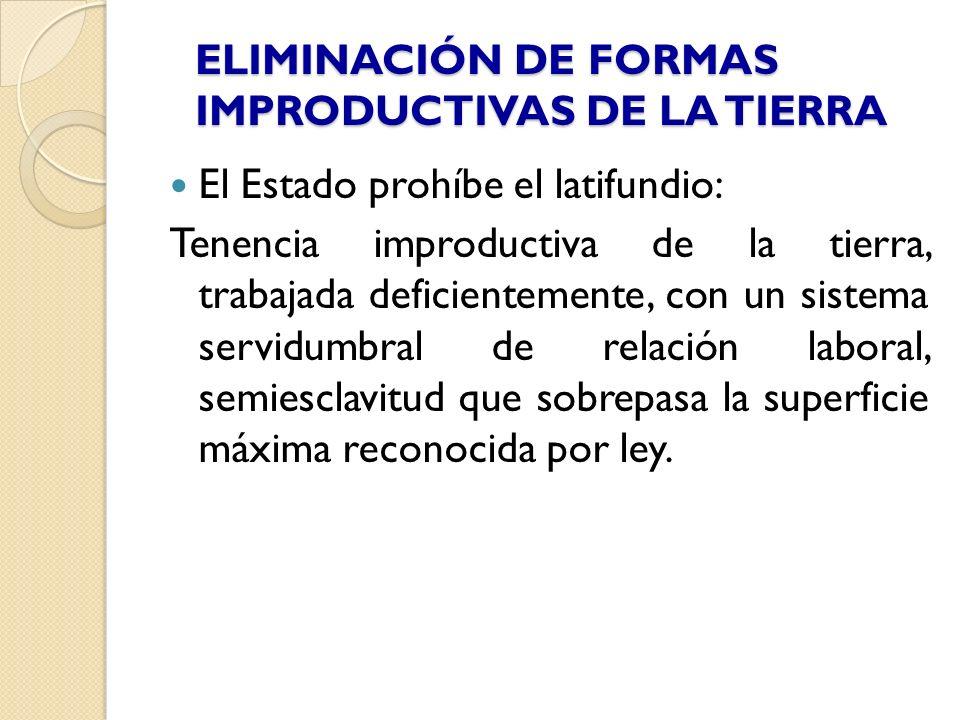ELIMINACIÓN DE FORMAS IMPRODUCTIVAS DE LA TIERRA