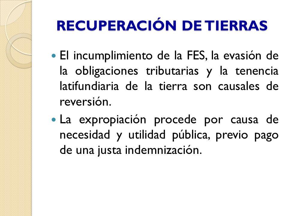 RECUPERACIÓN DE TIERRAS
