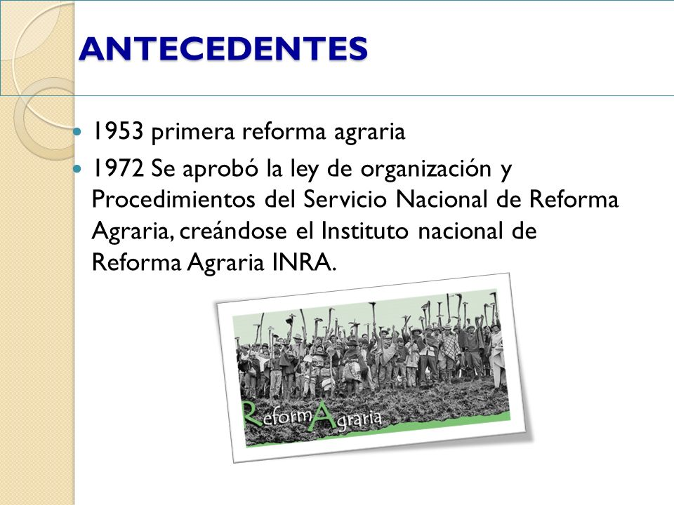 ANTECEDENTES 1953 primera reforma agraria