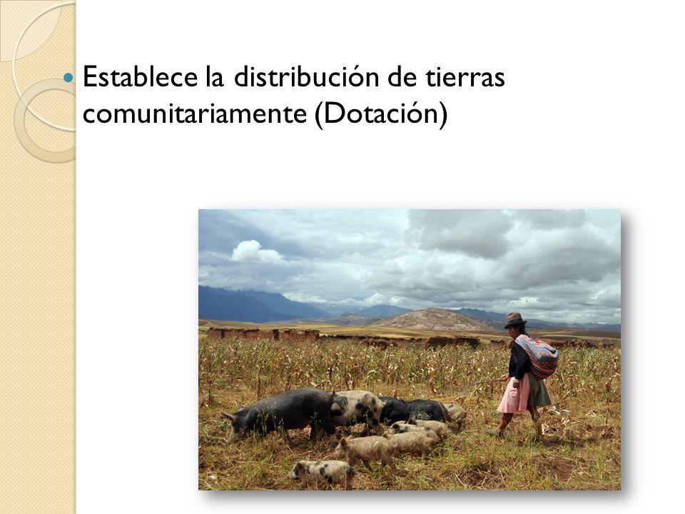 Establece la distribución de tierras comunitariamente (Dotación)