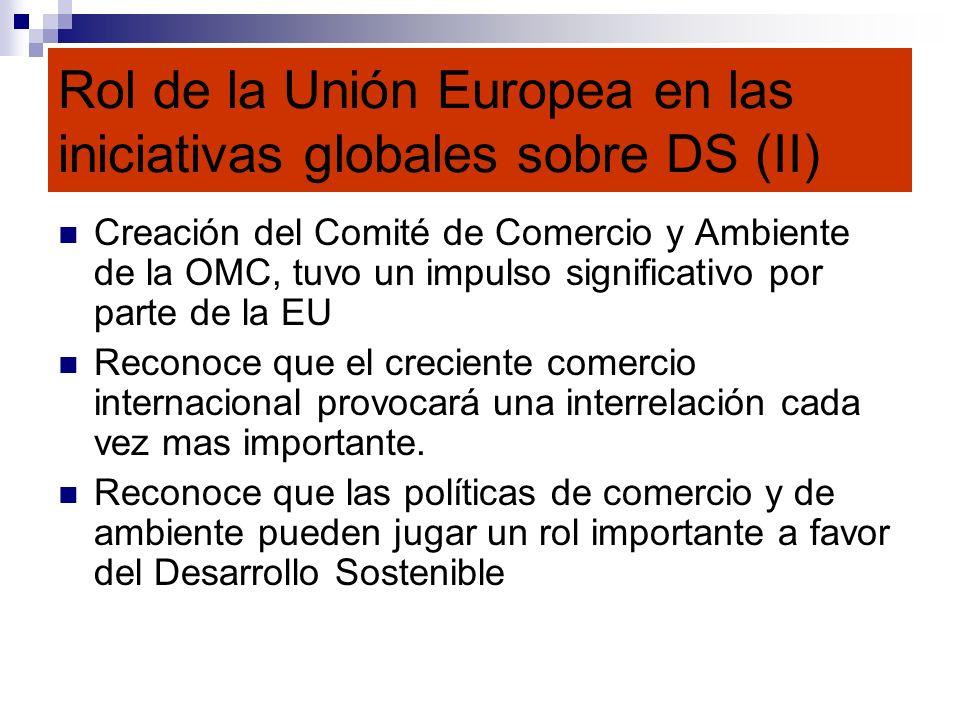 Rol de la Unión Europea en las iniciativas globales sobre DS (II)