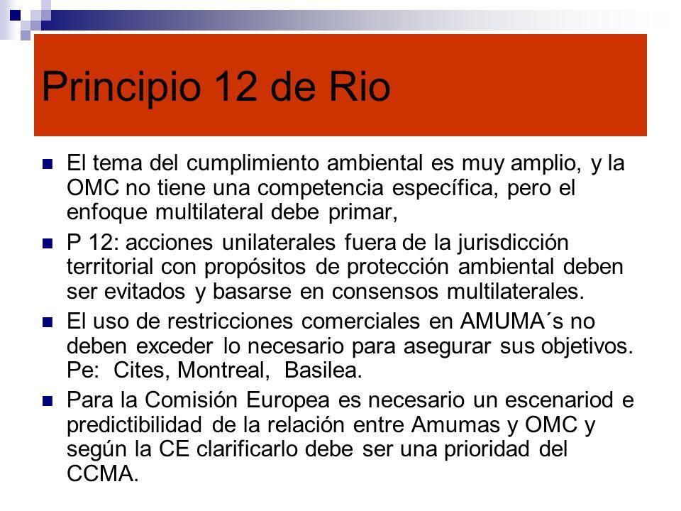 Principio 12 de Rio