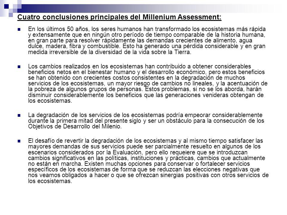 Cuatro conclusiones principales del Millenium Assessment: