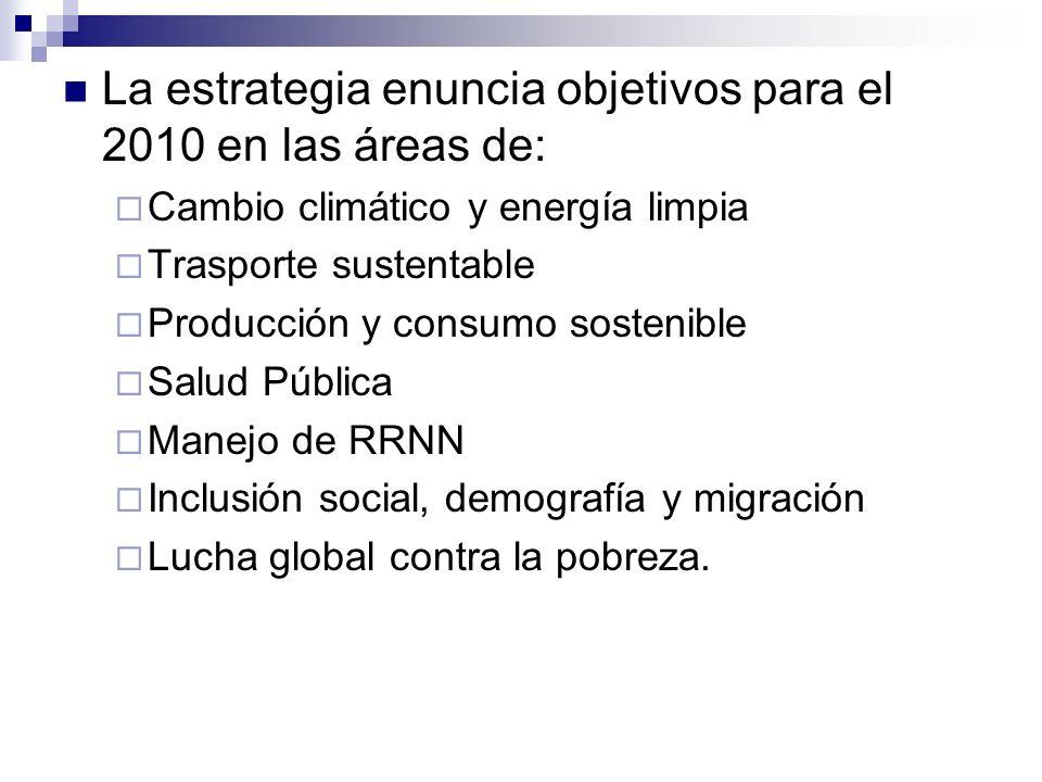 La estrategia enuncia objetivos para el 2010 en las áreas de: