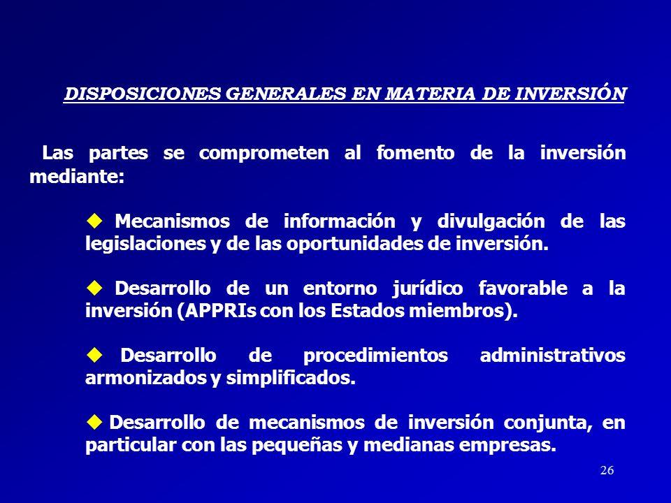 DISPOSICIONES GENERALES EN MATERIA DE INVERSIÓN