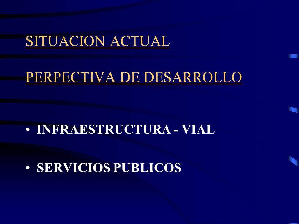 SITUACION ACTUAL PERPECTIVA DE DESARROLLO