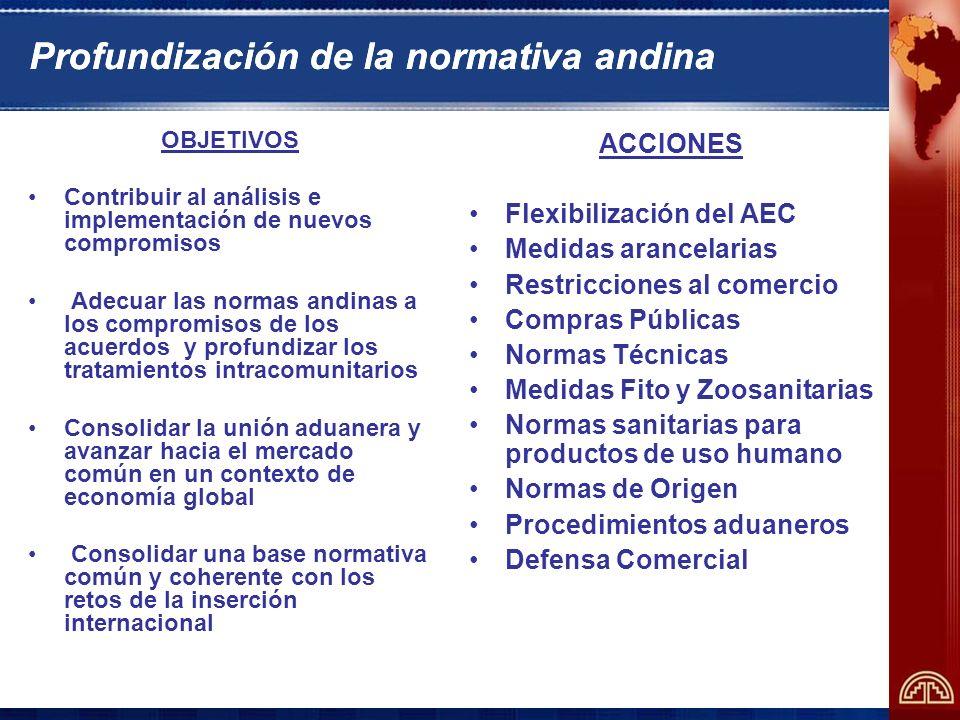 Profundización de la normativa andina
