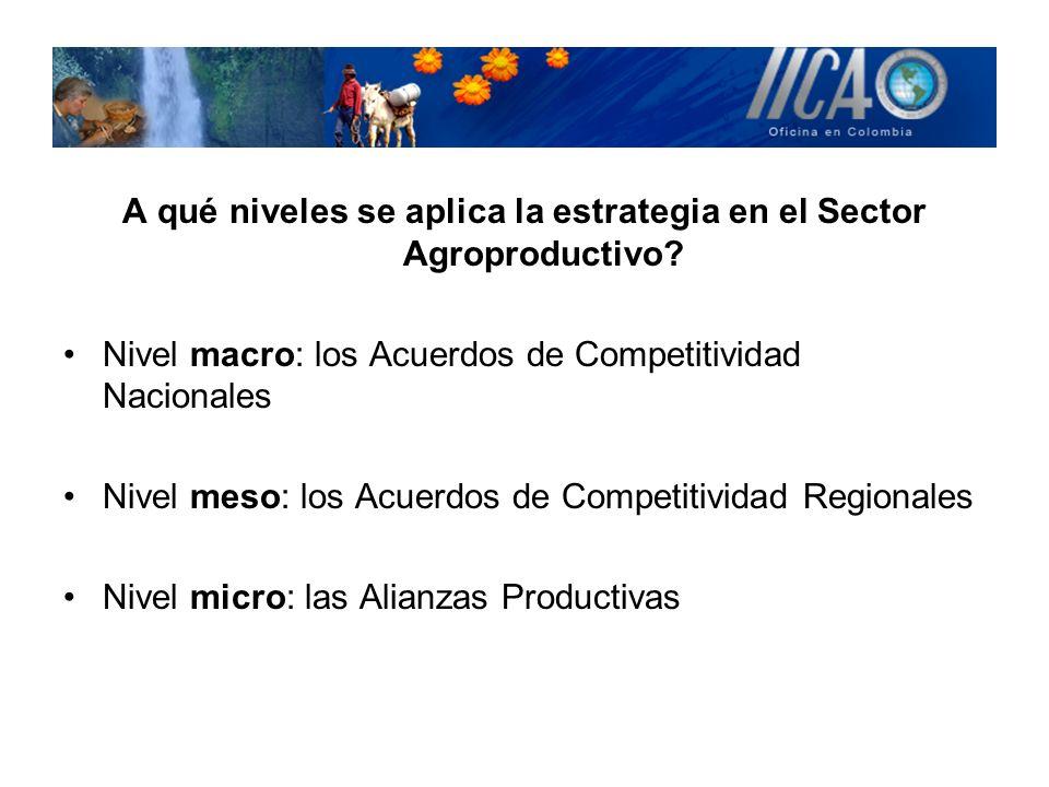 A qué niveles se aplica la estrategia en el Sector Agroproductivo