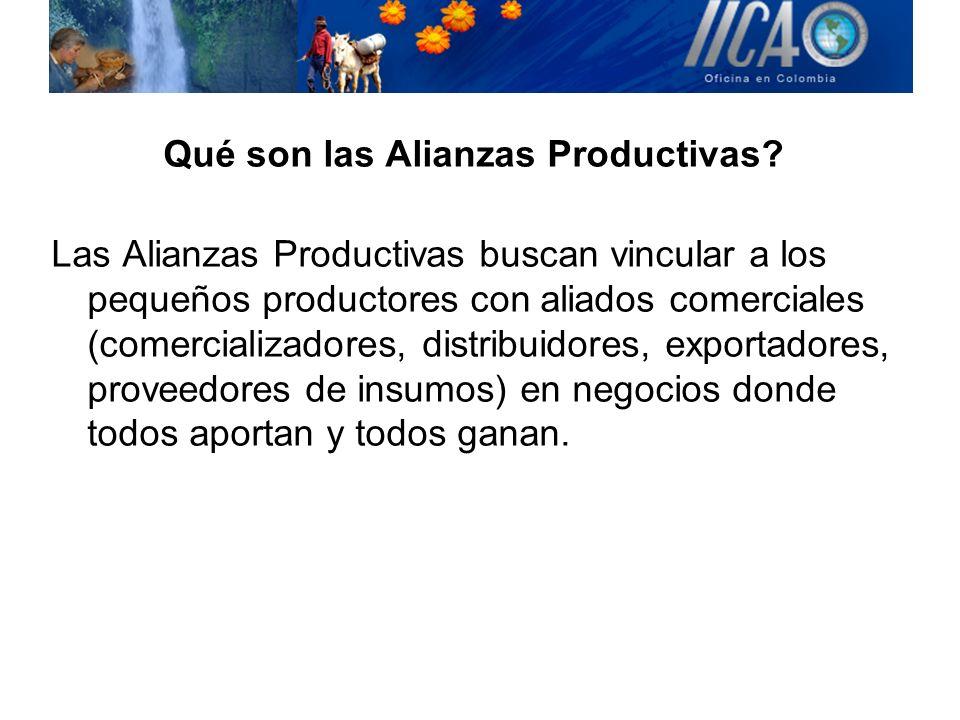 Qué son las Alianzas Productivas