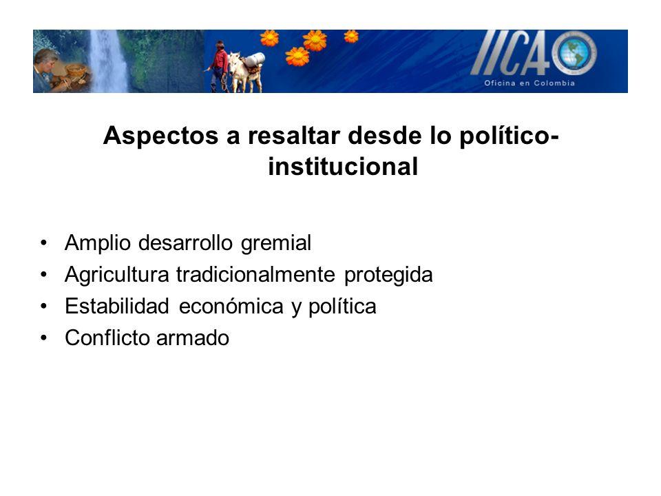 Aspectos a resaltar desde lo político-institucional