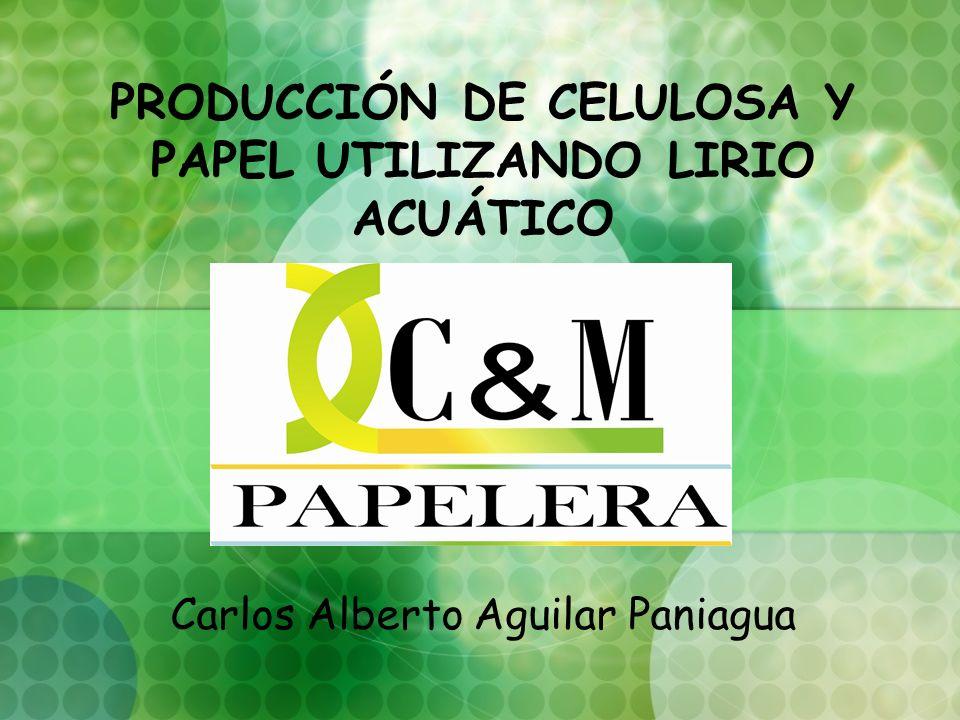 Producción de Celulosa y Papel utilizando Lirio Acuático