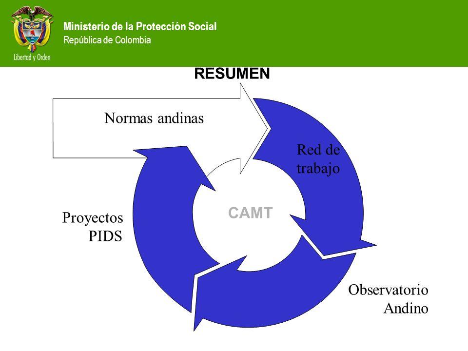RESUMEN Normas andinas Red de trabajo CAMT Proyectos PIDS