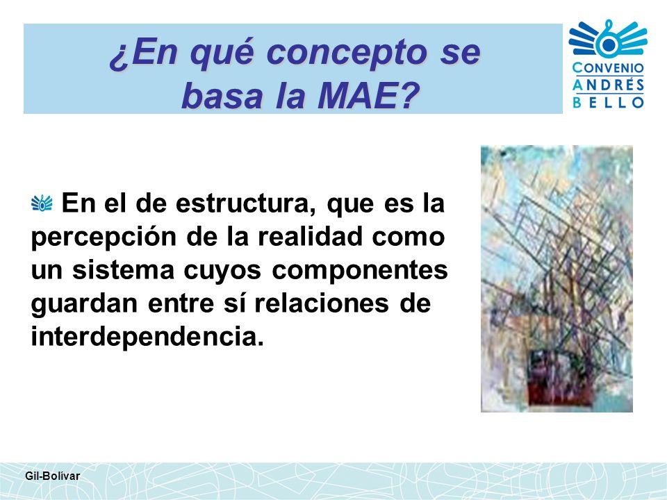 ¿En qué concepto se basa la MAE