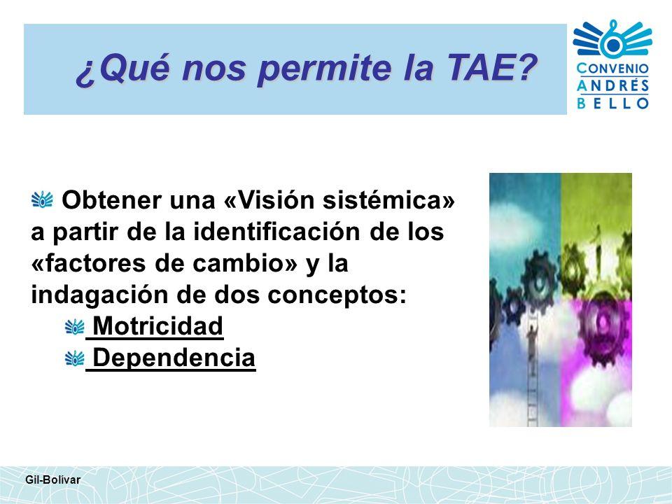 ¿Qué nos permite la TAE Obtener una «Visión sistémica» a partir de la identificación de los «factores de cambio» y la indagación de dos conceptos: