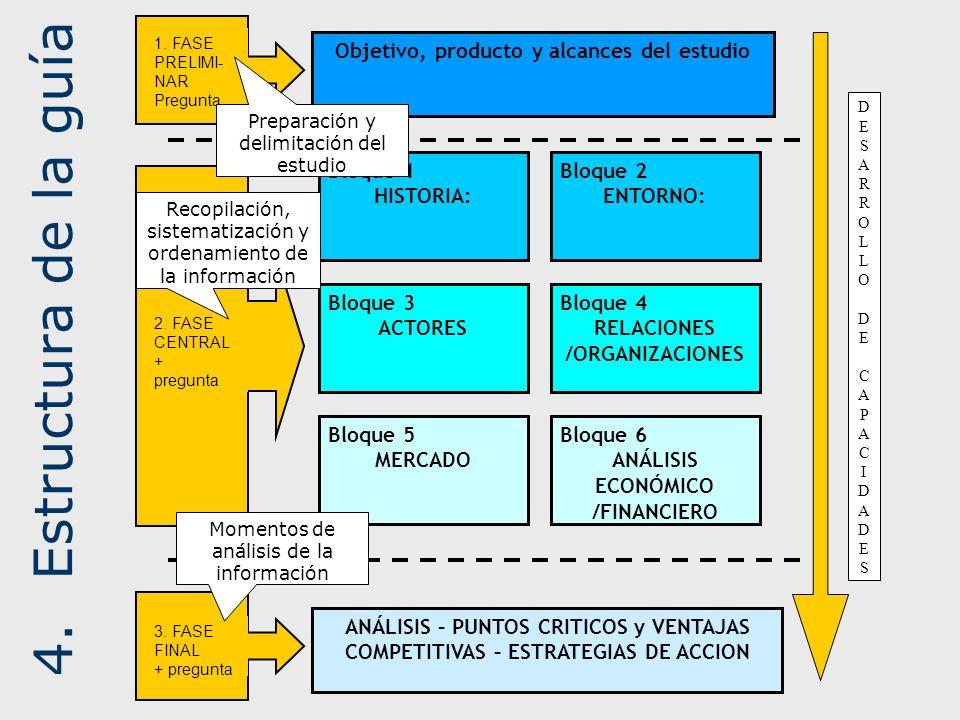 4. Estructura de la guía Objetivo, producto y alcances del estudio