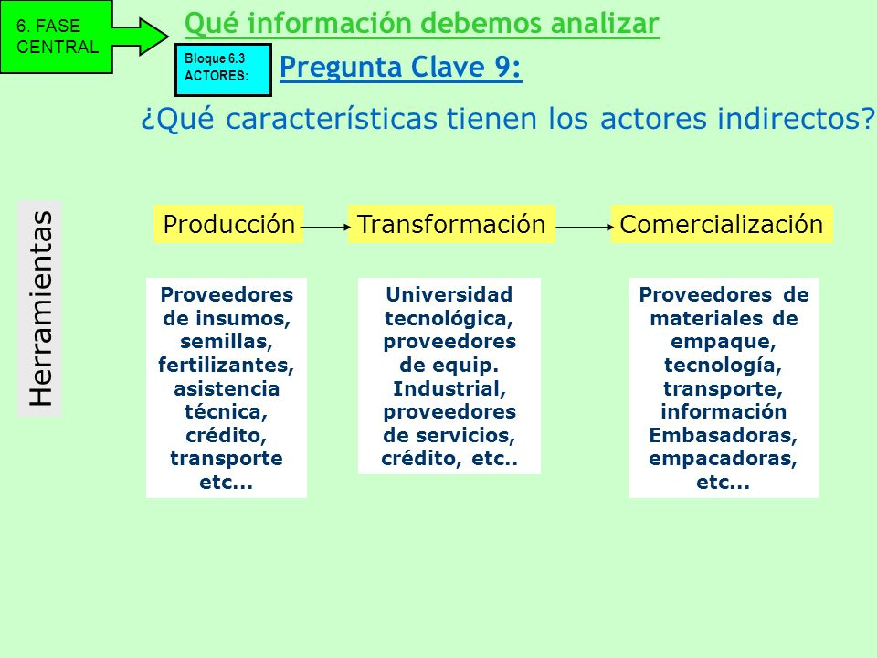 ¿Qué características tienen los actores indirectos